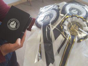 Meet Shetland Ponies at the Shetland Pony Experience