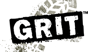 STUDY ALERT: Much Ado about Grit: A Meta-Analytic Synthesis of the Grit Literature