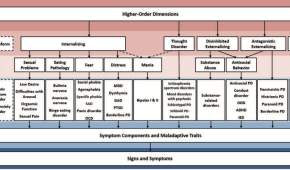 STUDY ALERT: The Hierarchical Taxonomy of Psychopathology (HiTOP): A Dimensional Alternative to Traditional Nosologies