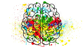 The Nerdy Dopamine Pathway