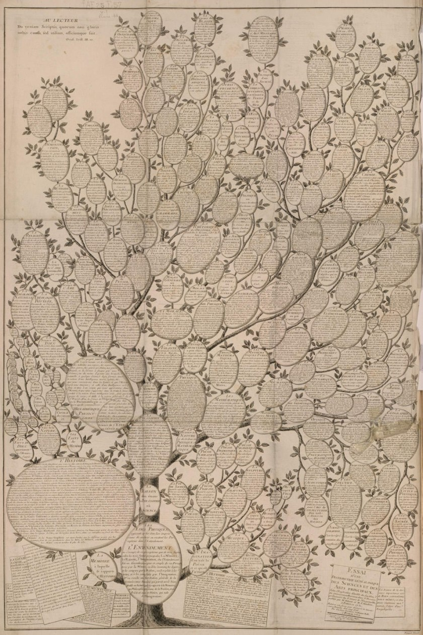 Chrétien Roth's 1769 depiction of the tree. [via]
