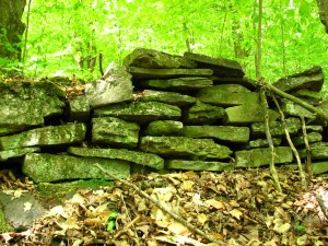 Old rock wall between Travor Rd and NY 96B