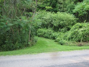 Trailhead at Robinson Hollow Rd