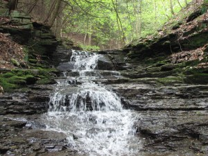 Waterfall on a stream between Snyder Hill Rd and W River Rd