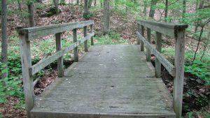 Wooden Bridge on FLT