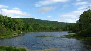 Pond near Texas Hollow Rd