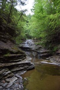 Waterfall in Mitchellsville Creek