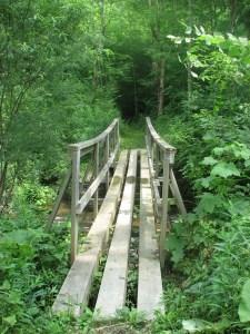 Foot bridge across a stream off Shindagin Hollow Rd