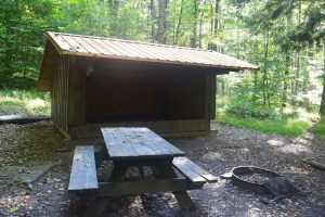 Stoney Creek Lean-to, south of ASP 1