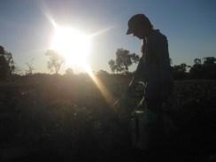 Capturing German friends spraying by sunset