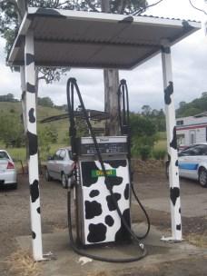 Cow fuel