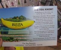 The Biggest Banana