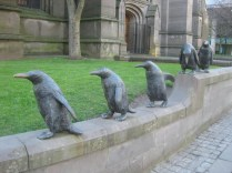 Penguins in Dundee
