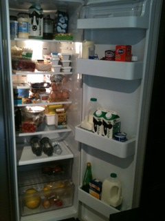 Fridge Contents