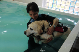 Holly Hydrotherapy