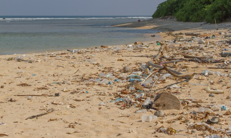 The Single Use Plastic Debate – Are We Killing Our Planet?
