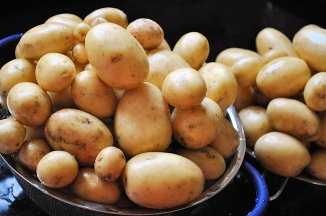 Plot Potatoes 2