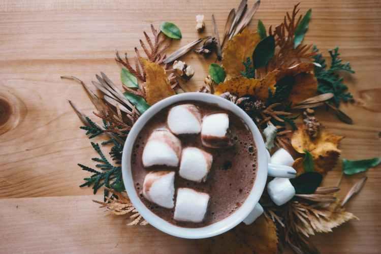 chocolate in mug