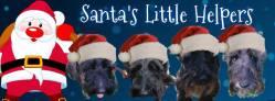 20 Julie JL and santas little helpers