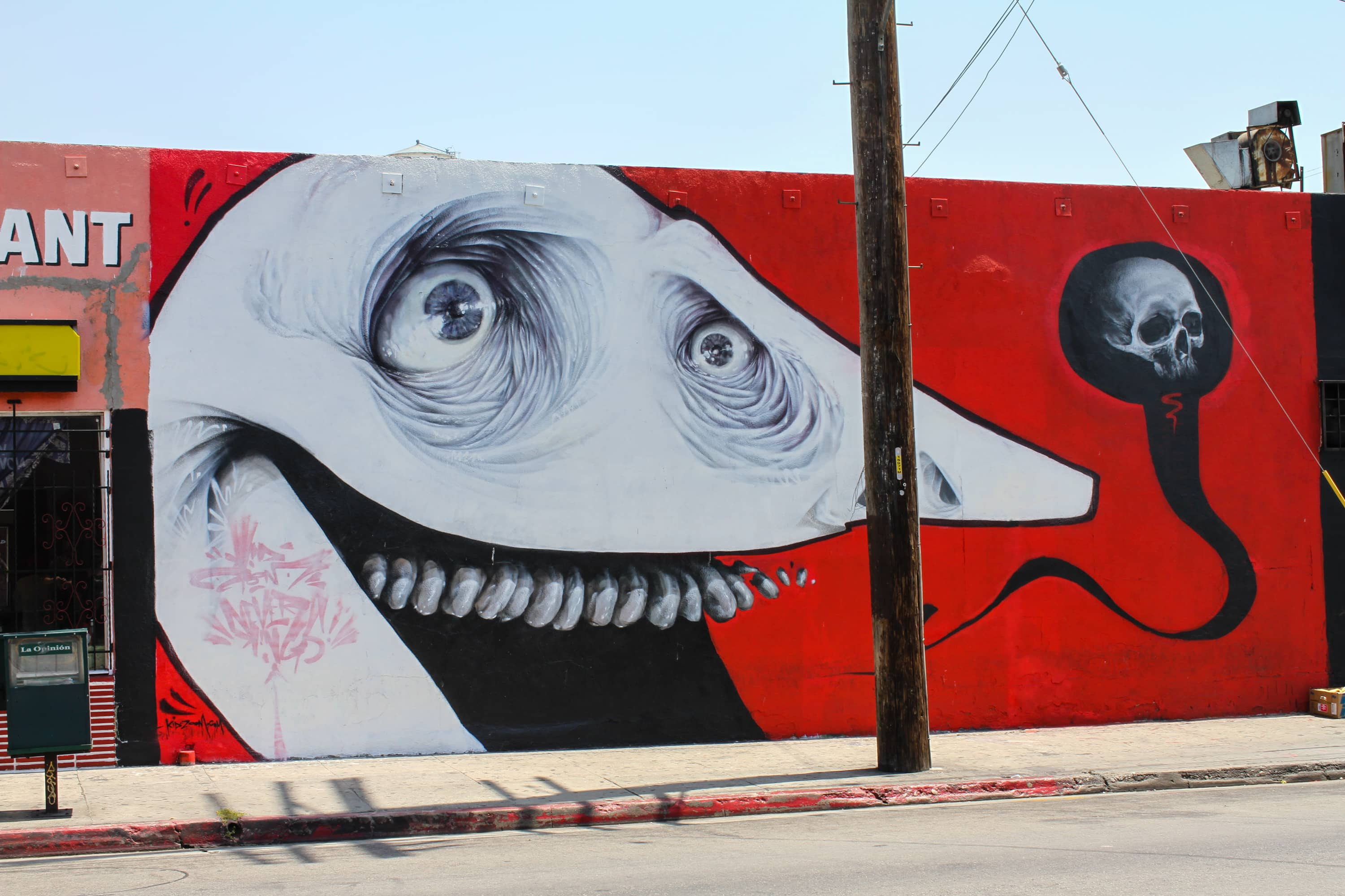 LA Freewalls Kid Zoom