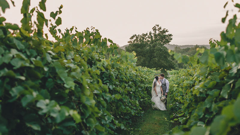 Winery Wedding at Chandler Hill Vineyards  |  Meagan & Zach