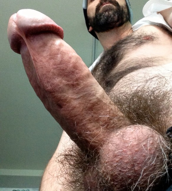 Fat Hairy Dick and Nuts