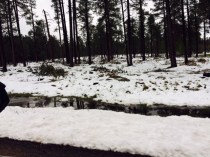 May 15 Snow - Forest Lakes AZ