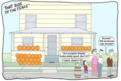 Emily's Halloween Pumpkin Display.jpg