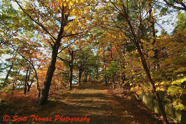 Mountain trail displaying the autumn colors in upstate New York.