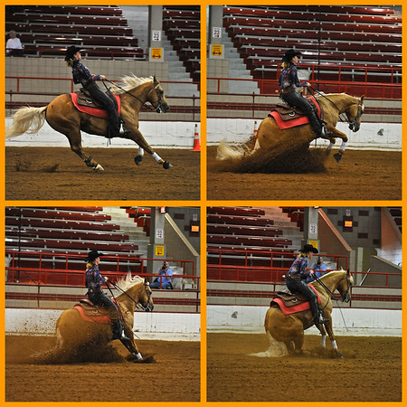 Reining horse sliding stop sequence.