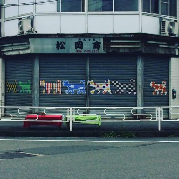 02-inuyama-cats