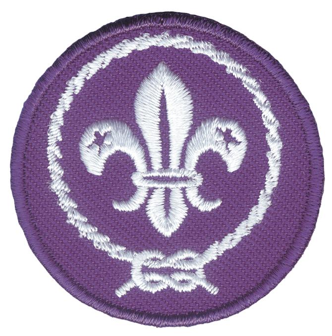 Promessa scout wosm