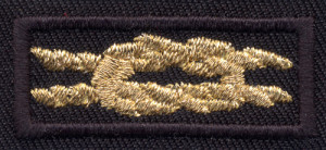 a07a3c66bff9 Speakers Bank Award  Got a penchant for public speaking  BSA Speakers Bank  members who give at least 20 presentations are eligible for this knot.