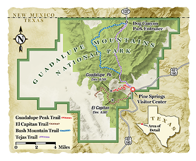 Plan a visit to the Guadalupe Mountains National Park in Texas