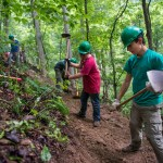 Make the most of conservation projects in your community
