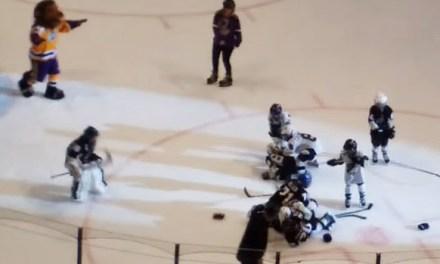 Mascots Break Up Intermission Mite Fight