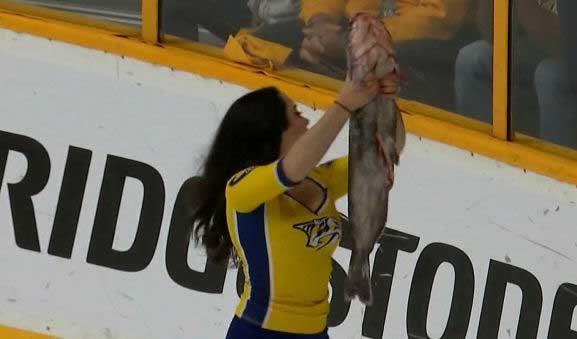 Predators Catfish
