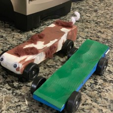 Guinnea Pig Racer