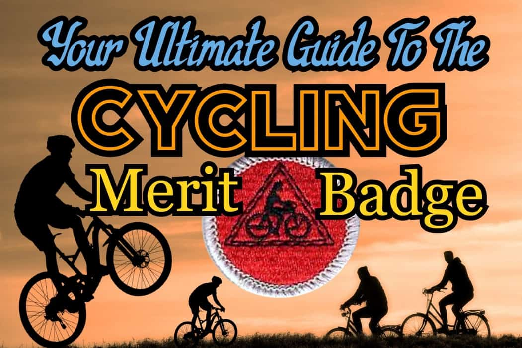 If You Bought A Mountain Bike On Animal Crossing New ...