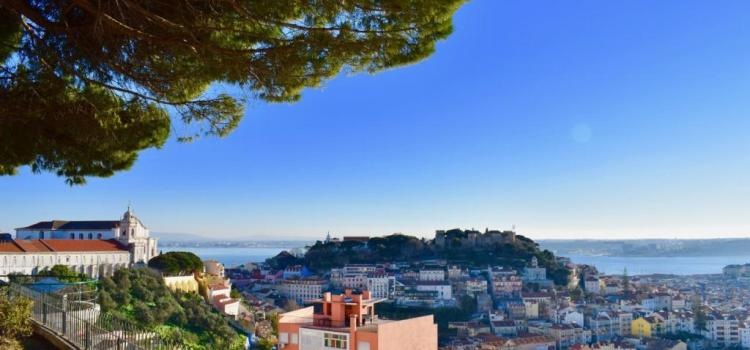 Call for participants – Local Impact Agent – Portugal