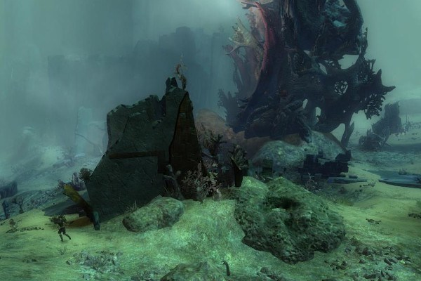 Location in Malchor's Leap near the Elder Wood farm in Guild Wars 2