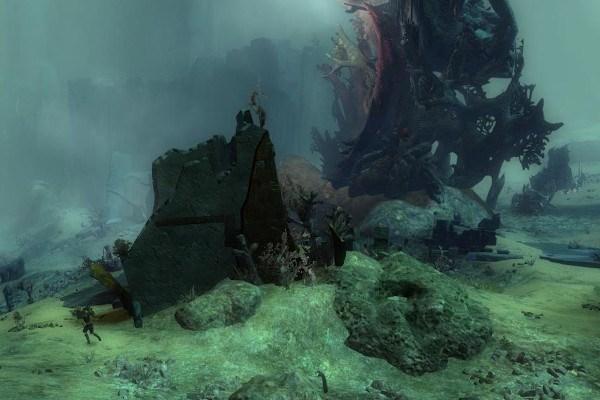 Location in Malchor's Leap near the Elder Wood farm in Guild Wars 2