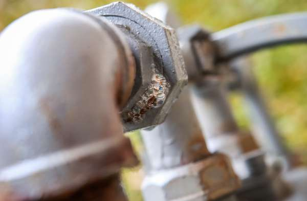 Gas pipe with soap mixture showing bubbles from gas leak