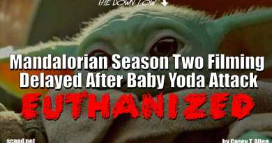 The Down Low: Mandalorian Season Two Filming Delayed After Baby Yoda Attack, Euthanized