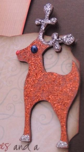 Christmas Close-up