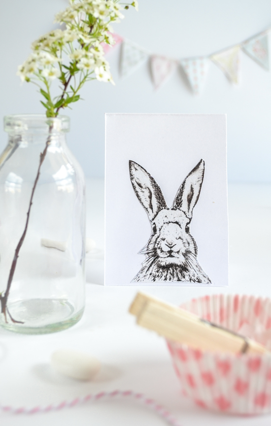 bunny-passionshake-25281-of-1-25291