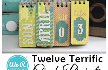 Twelve Terrific Cinch or Bind-it-All Projects