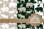 Forest Animal Paper & Silhouette Downloads