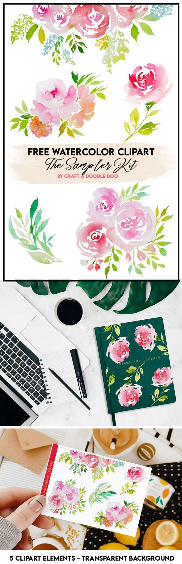 Floral and Foliage Watercolor Clipart