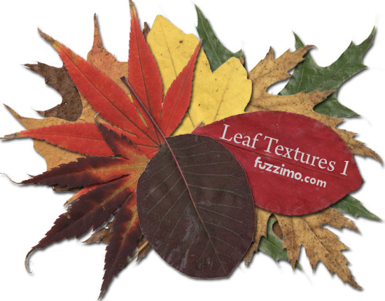 fzm-Leaf-Textures-01-500x390